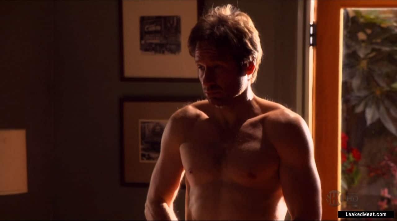 David Duchovny chest