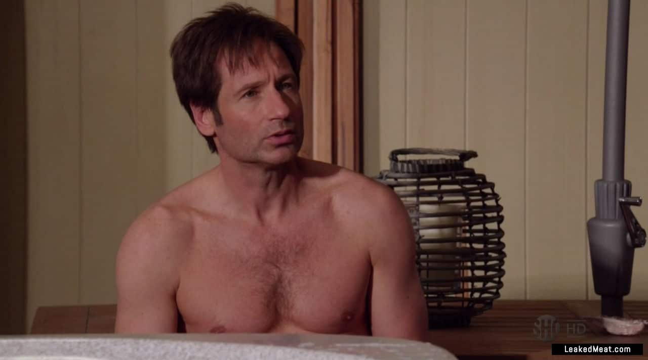 David Duchovny sexy leaks