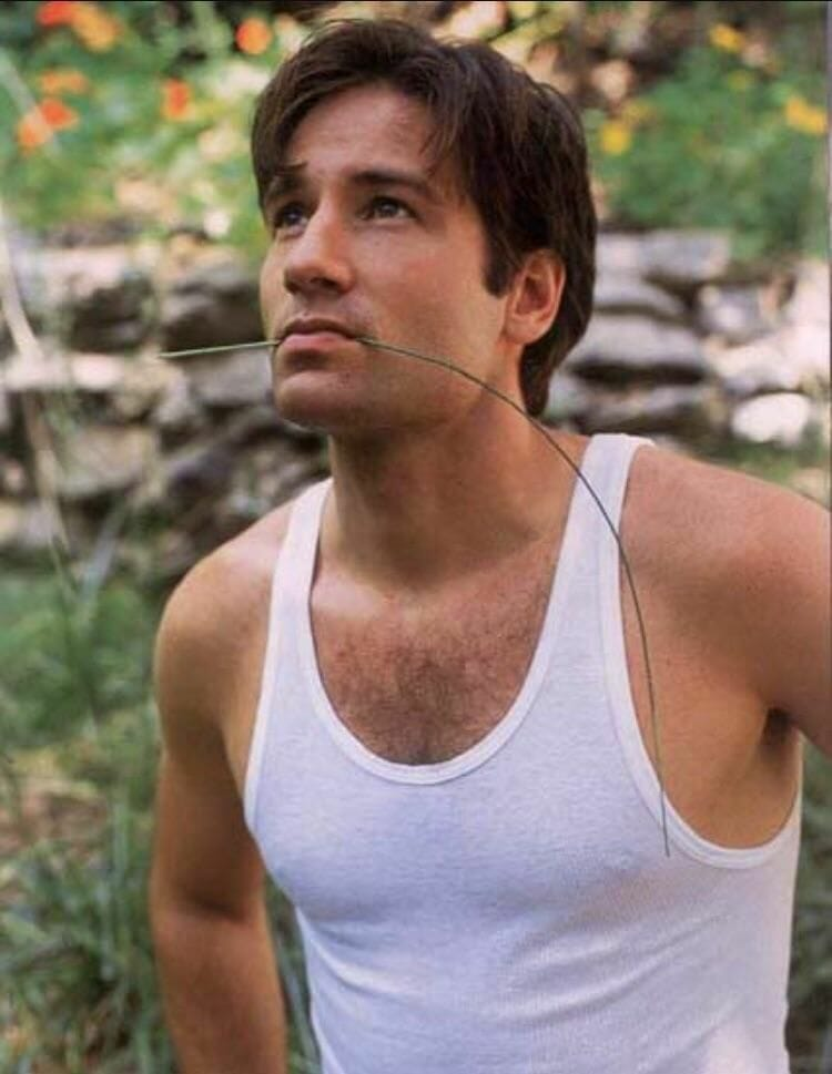 David Duchovny hot photos