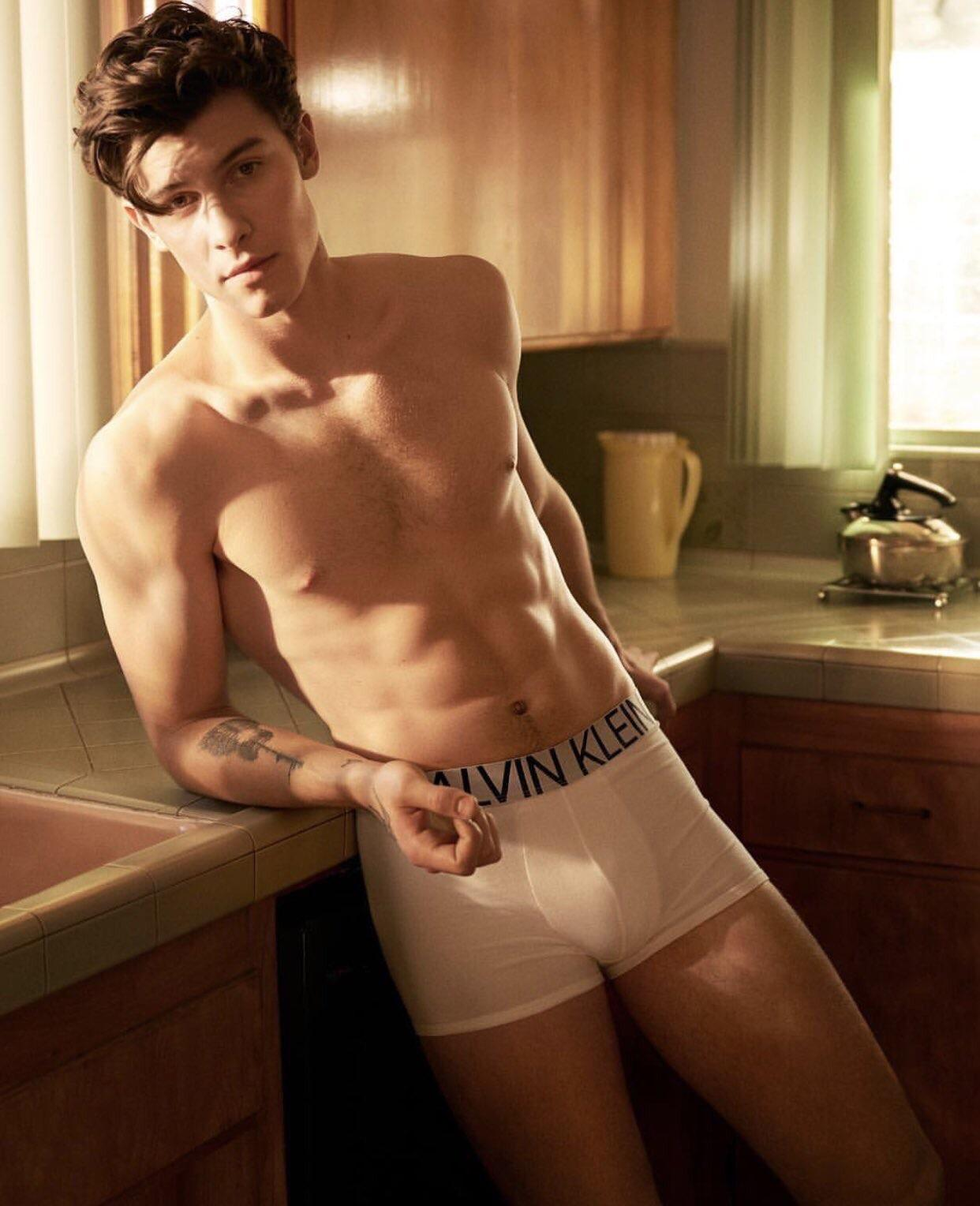 Shawn Mendes modeling sexy underwear