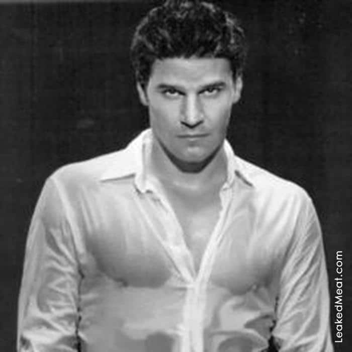 David Boreanaz | LeakedMeat 17