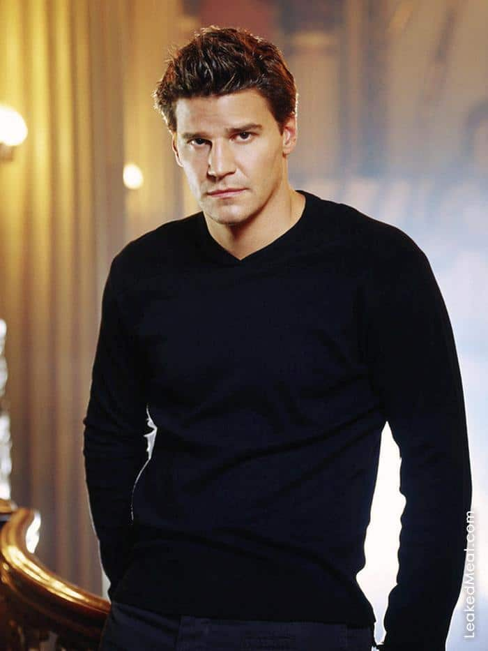 David Boreanaz | LeakedMeat 27