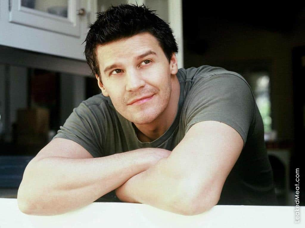 David Boreanaz | LeakedMeat 28